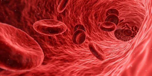 כדוריות הדם צריכות חנקן חד חמצני כדי למסור חמצן