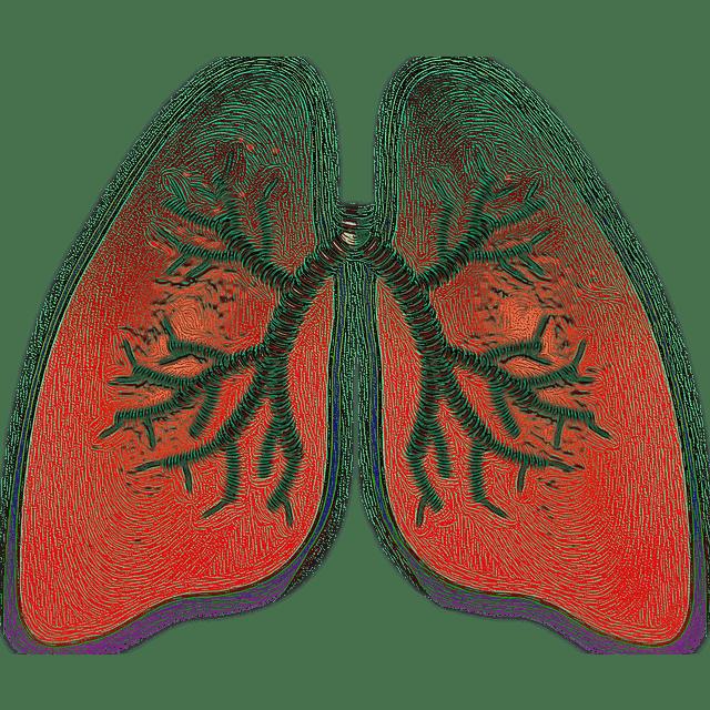 הפסקות נשימה בשינה: סיפאפ ודלקת ריאות